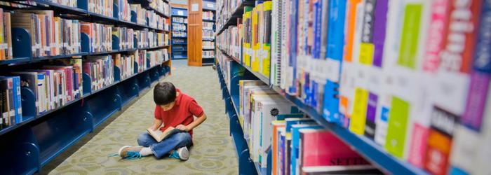 10-mejores-libros-primaria-instituto-muldoon